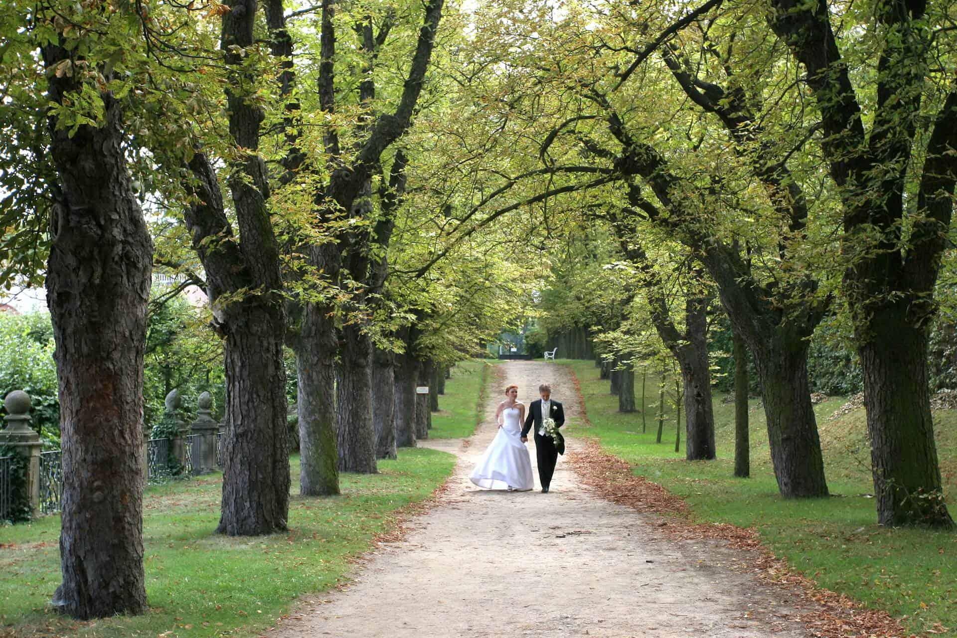 Svatba Havlíkovi - ve francouzském parku jsme se procházeli dlouho