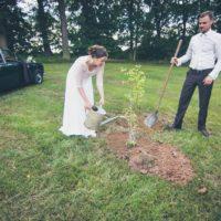 Sázení svatebního stromu