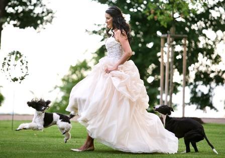 Nevěsta v parku Chateau Mcely