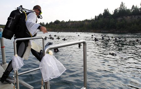 Svatba pod vodou