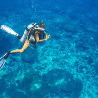 Líbánky na Maledivách potápění