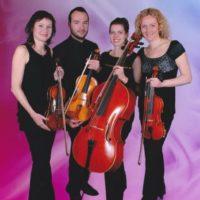 Hudba na svatbu Duo, trio a kvartet na růžovém pozadí