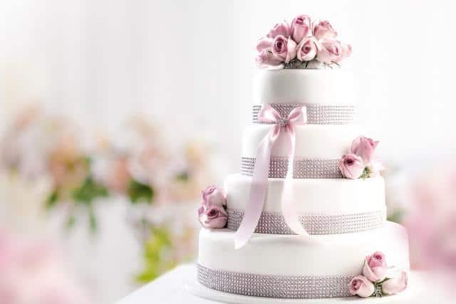 Ollies dorty s.r.o. dort fialový
