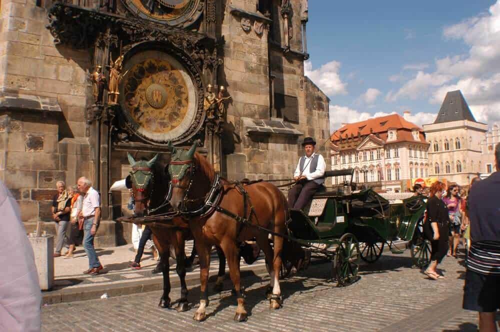 Svatební kočár s koňmi Pony Travel