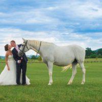 Favory Benice - novomanželé s koněm