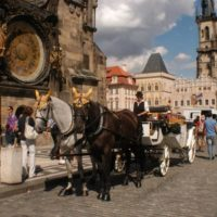 Pony Travel 1