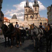 Pony Travel 3