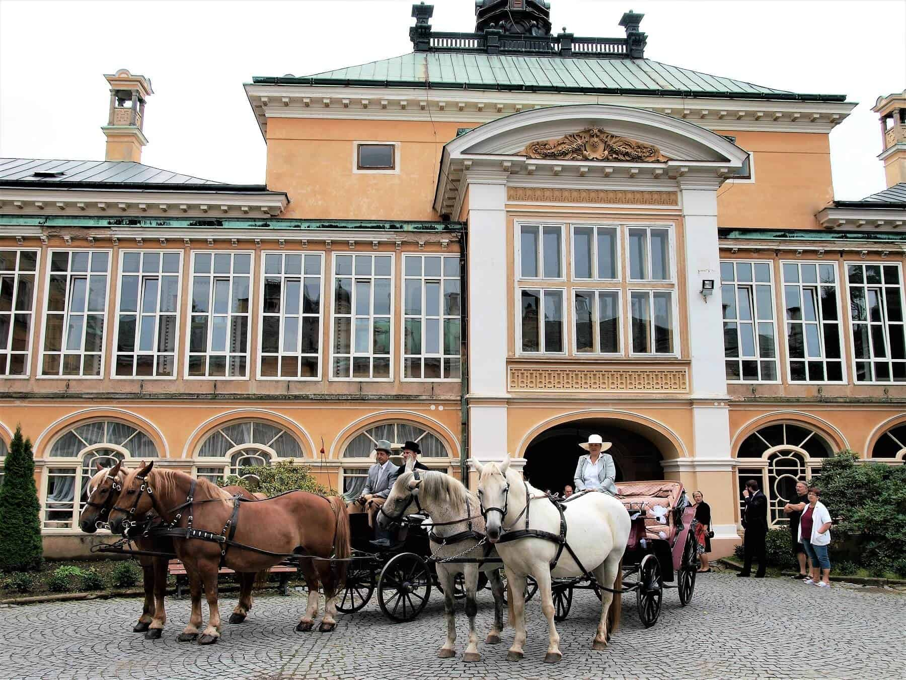 Zámek Světlá nad sázavou s koňmi