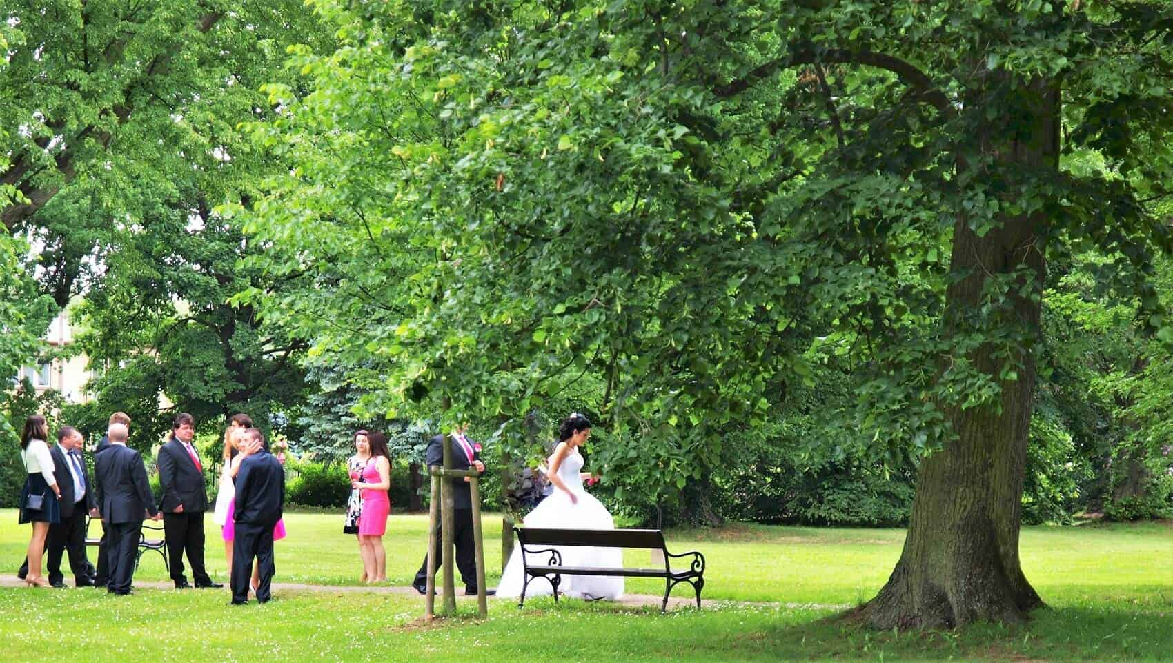 Zámek Světlá nad sázavou - svatebčané v parku