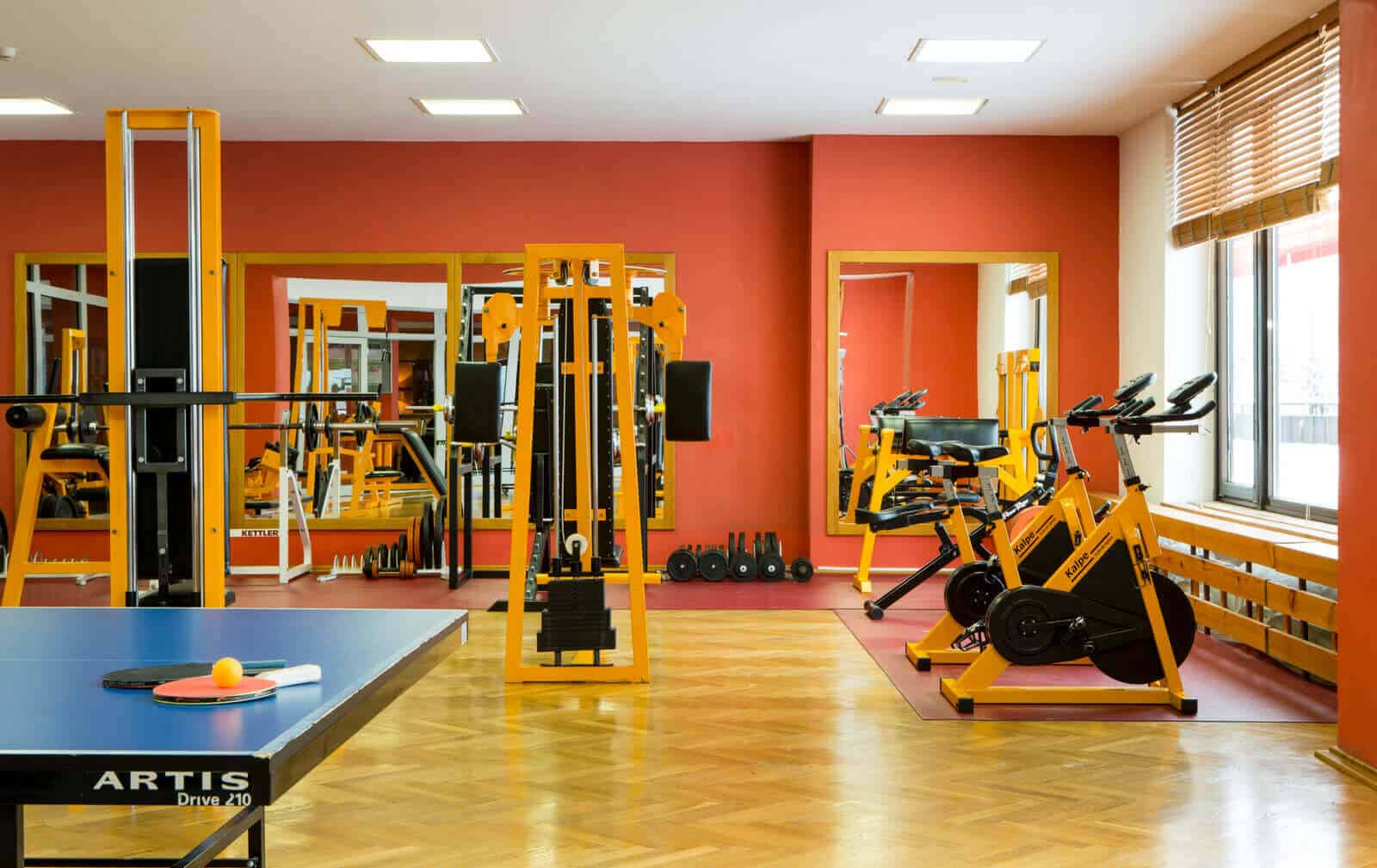 Orea Resort Horal - fitness