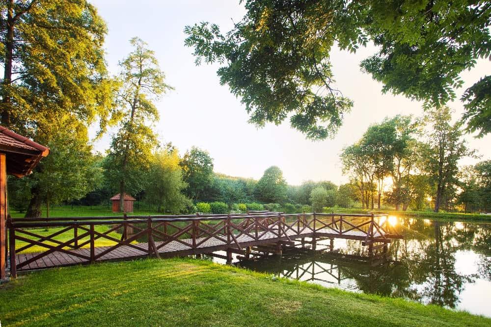 Zámek Obytce - rybník
