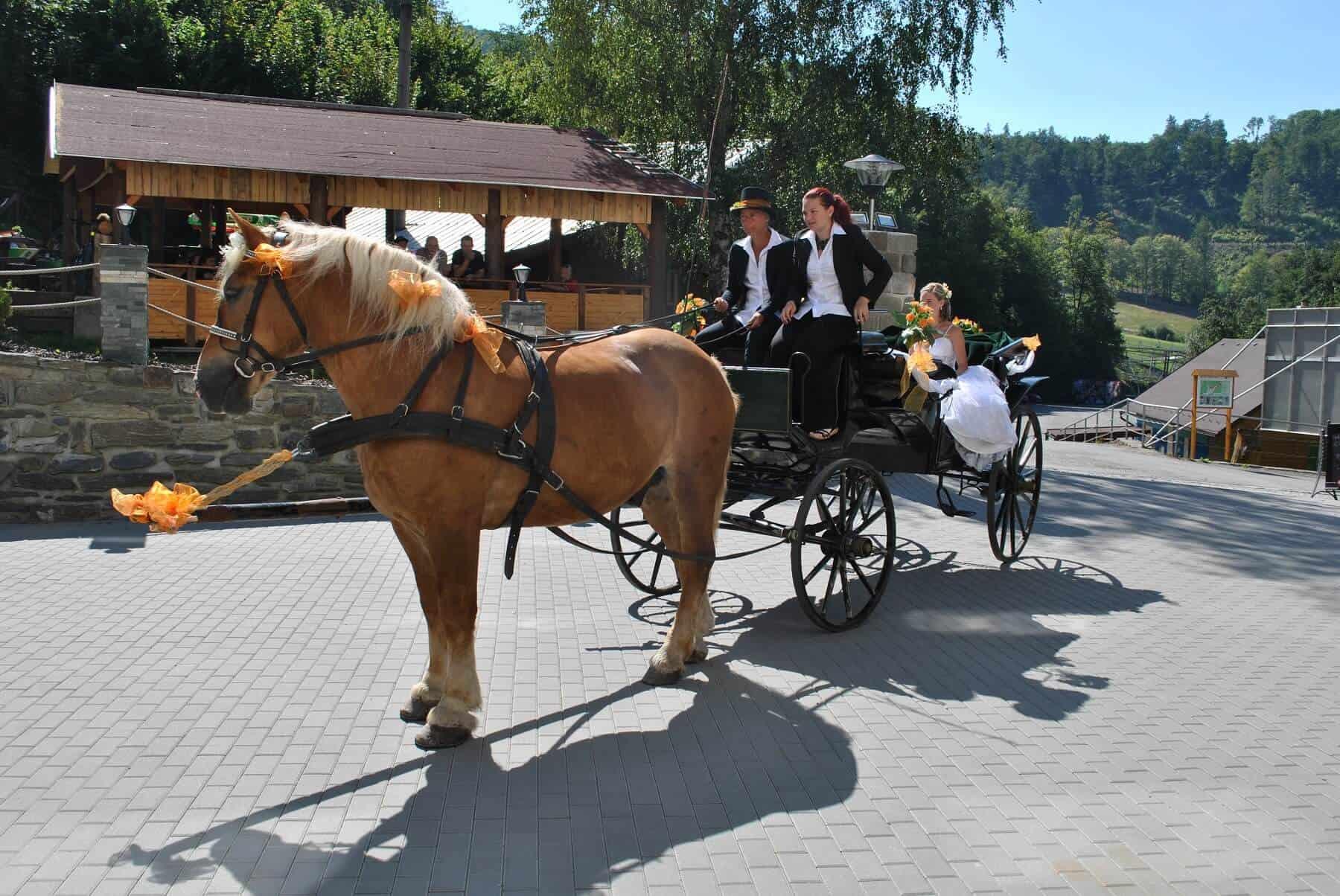 Hotel Hluboký Dvůr - svatební kočár