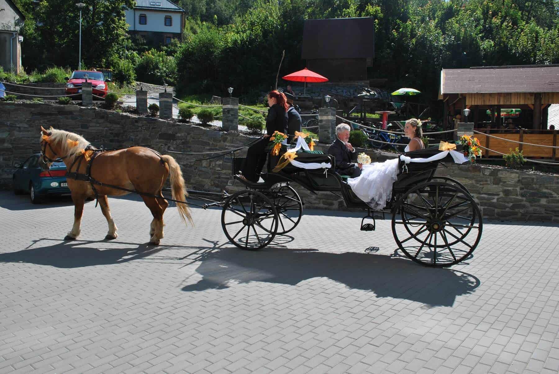 Hotel Hluboký Dvůr - nevěsta v kočáru