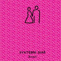 Svatební diář Smart barva růžová
