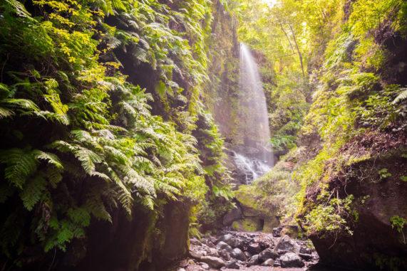 La Palma - vodopád v přírodní rezervaci Los Tilos