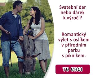 Oslí dárkový poukaz: romantický výlet s oslíkem do přírodního parku